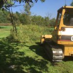 Clearing and Removing Stumps In Graveyard