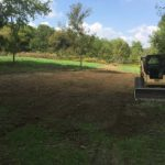Yard cleared and grass graded